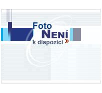 Toner Canon iR-C5045/5051, magenta, CEXV28M, 38000s, 2797B002, O